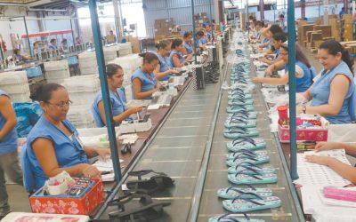Grendene Lança E-commerce Da Rider E Aposta Na Economia Circular
